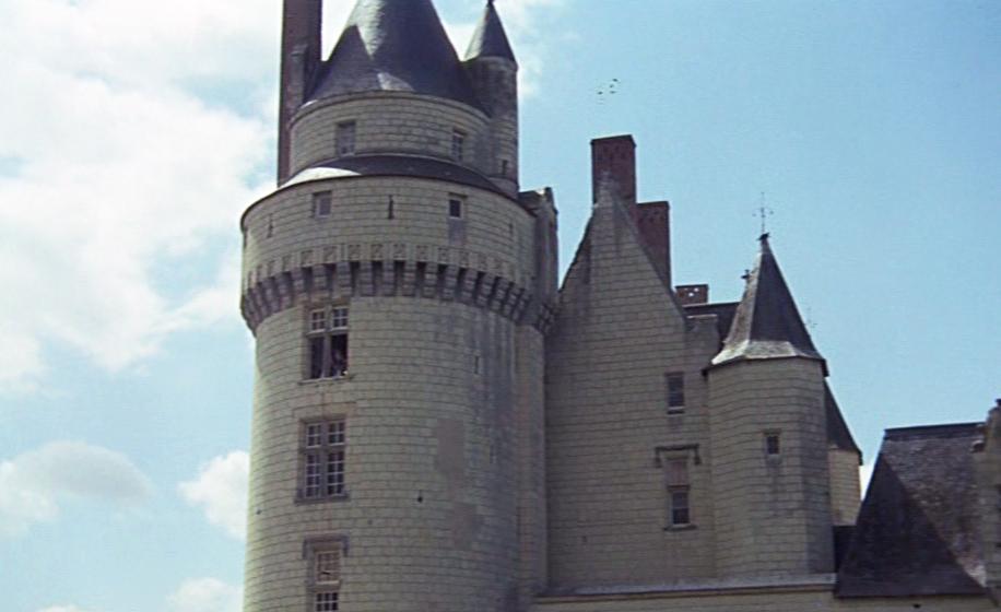 peau dane chateau bleu1