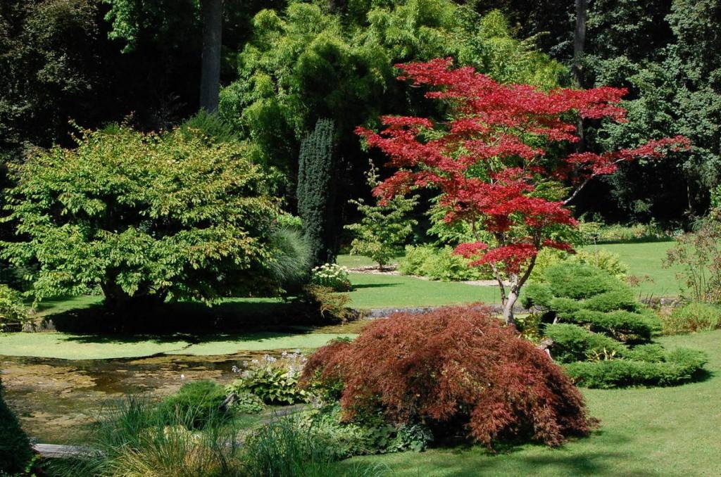 ob_717e93_france-courances-le-jardin-japonais-3